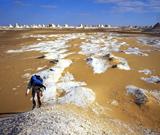 Trekking en Égypte : Le Désert Blanc