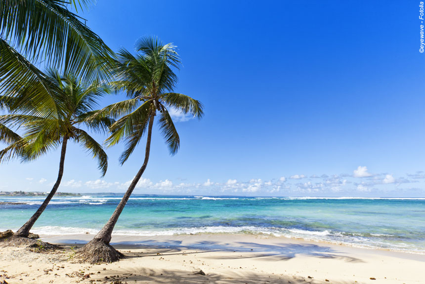 Guadeloupe et Les Saintes, rando coco