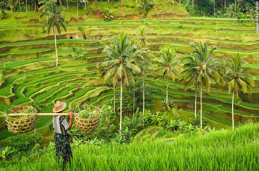 Bali, en tongs et en sarong !