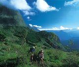Trekking à La Réunion : L'île intense