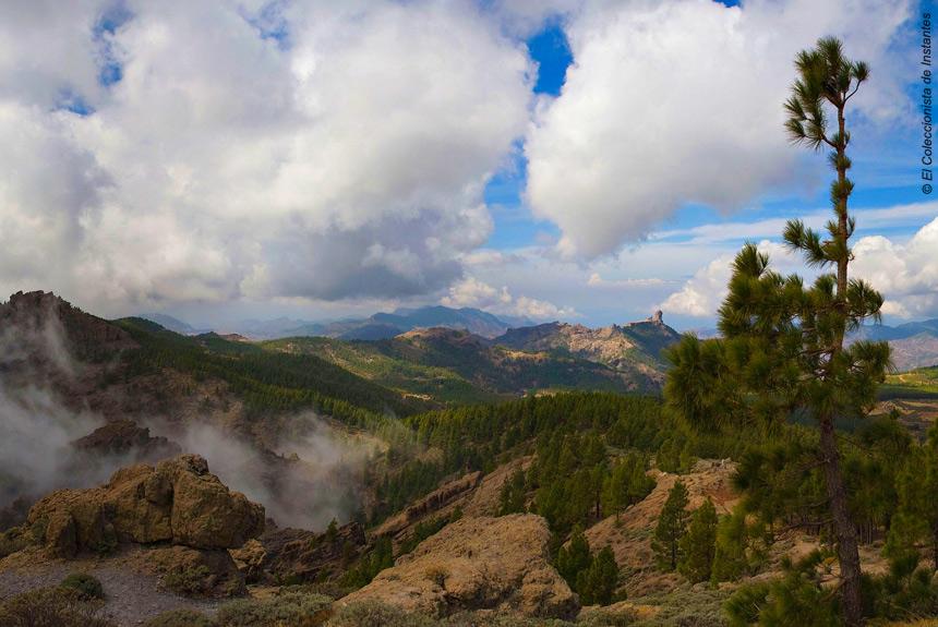 De Gran Canaria à Fuerteventura