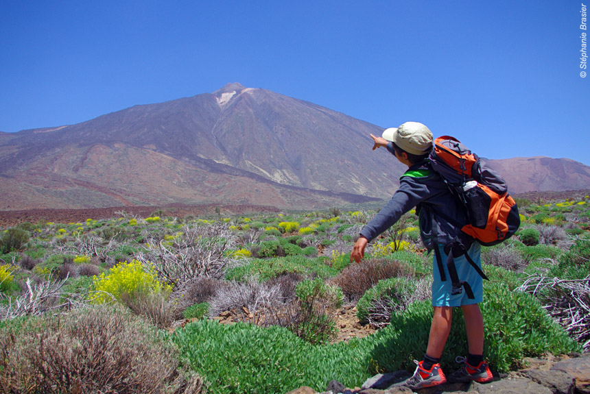 Gomera/Tenerife, volcan endormi et dauphins joueurs