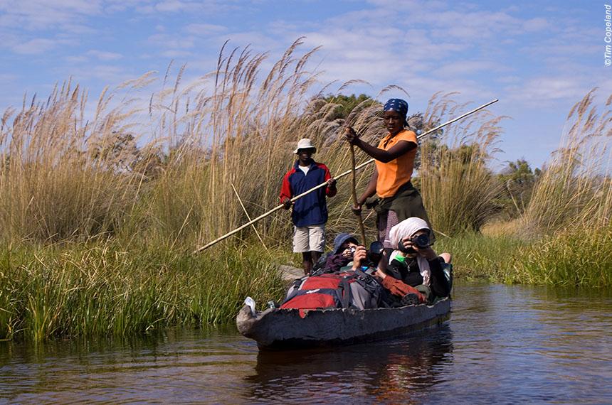 Afrique du sud, Namibie, Botswana et Zimbabwe. Expédition australe