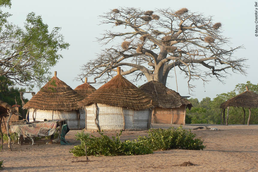 Village sénégal