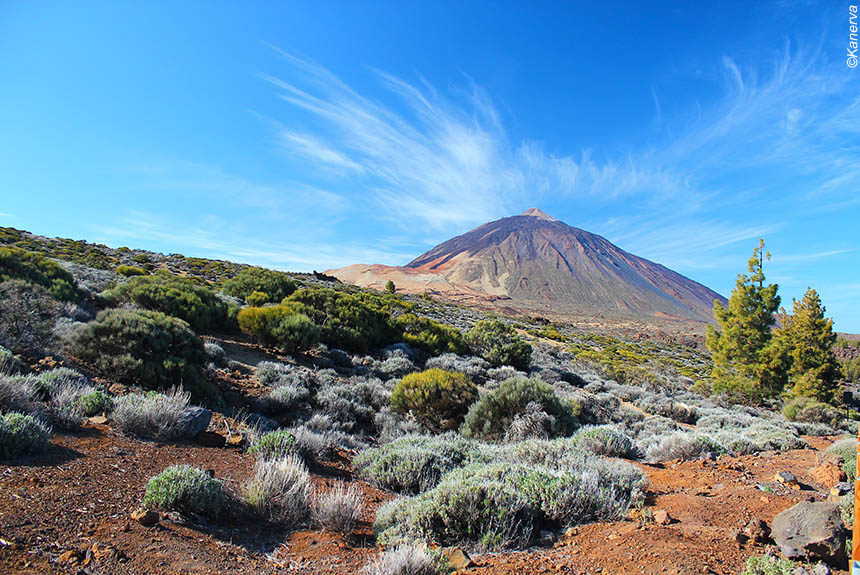Parc National du Teide aux Canaries