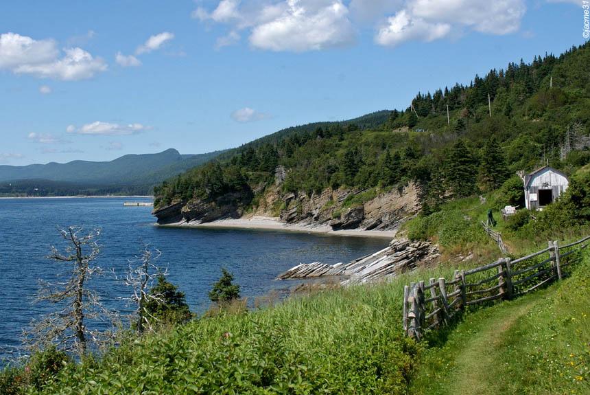 Image Québec, baleines et caribous