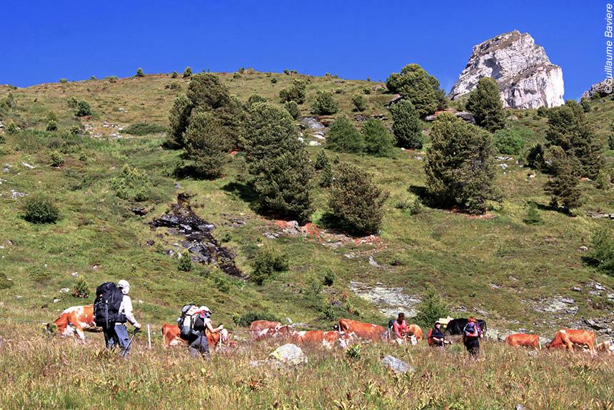 Voyage à pied : Trek autour des 4000 du Valais