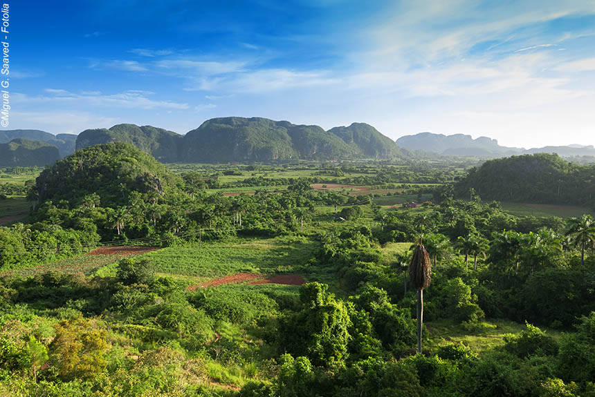 Voyage à pied : Les jardins secrets de Pinar del Rio