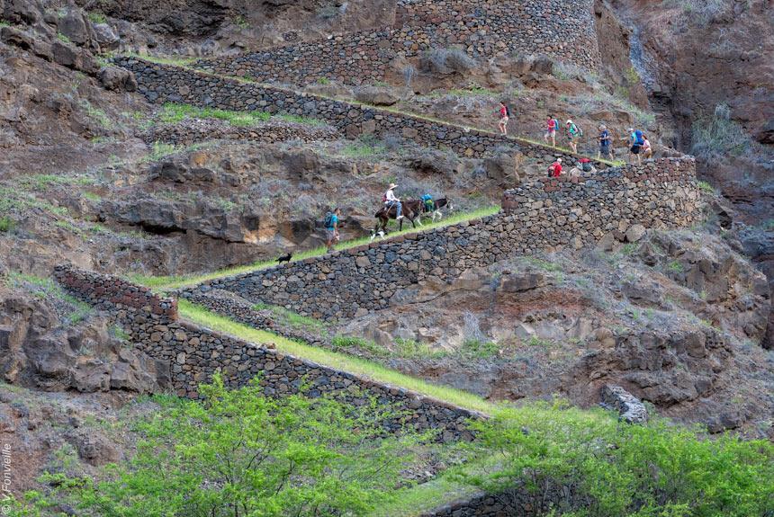 Voyage à pied Cap-Vert : Au coeur de Santo Antao