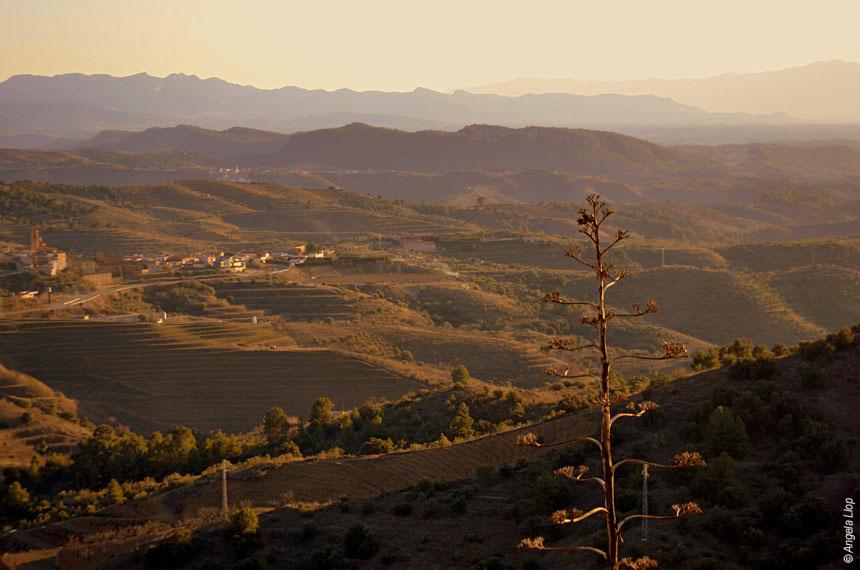 Image De Beceite au Delta de l'Ebre, des sierras aragonaises à la mer