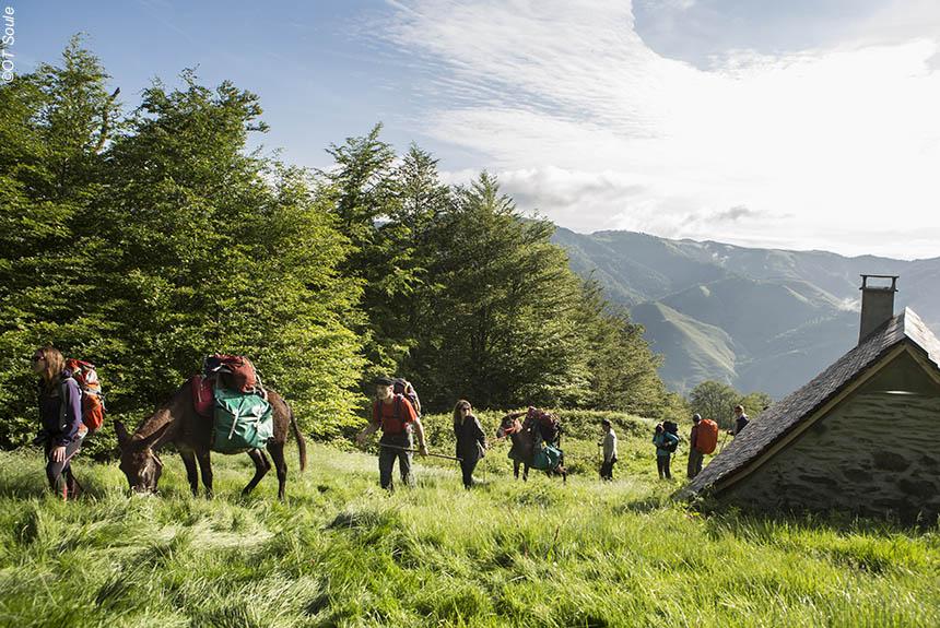 Voyage avec des animaux France : Sentiers de Soule, de cayolars en cayolars