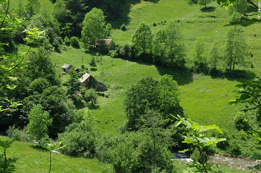 Image Retrouvance en vallée de Vicdessos, la frontière sauvage