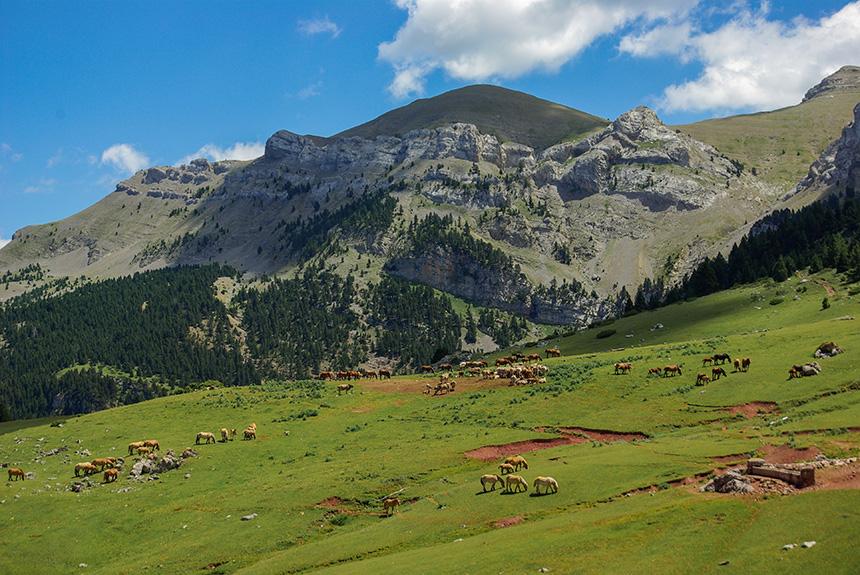 Image Tour de la Sierra de Cadi, et Pedraforca