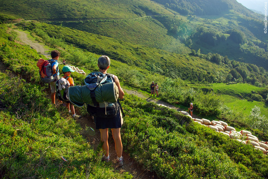 Image Le Tour du Val d'Azun accompagné, avec des ânes