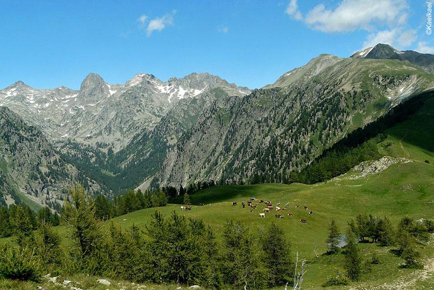 Voyage à pied : La grande traversée des Alpes, de Briançon à Menton
