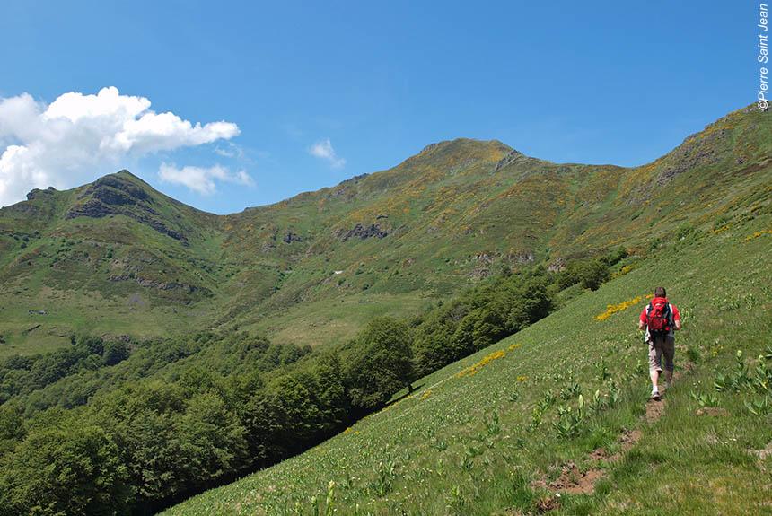 Voyage à pied : Authentique Cantal, volcans grandeur nature !