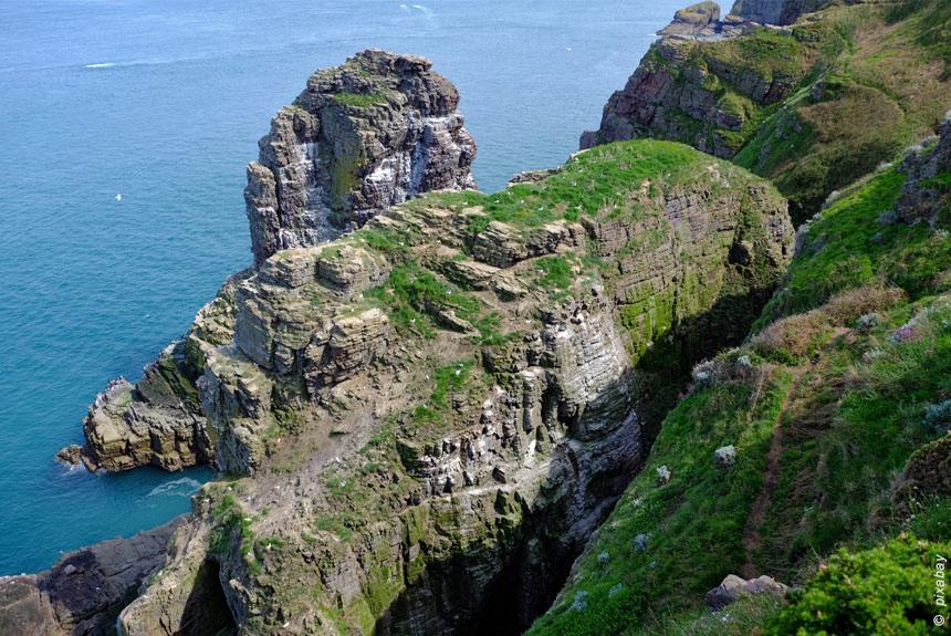 Voyage à pied : La Côte d\'Émeraude, de Cancale au Cap Fréhel