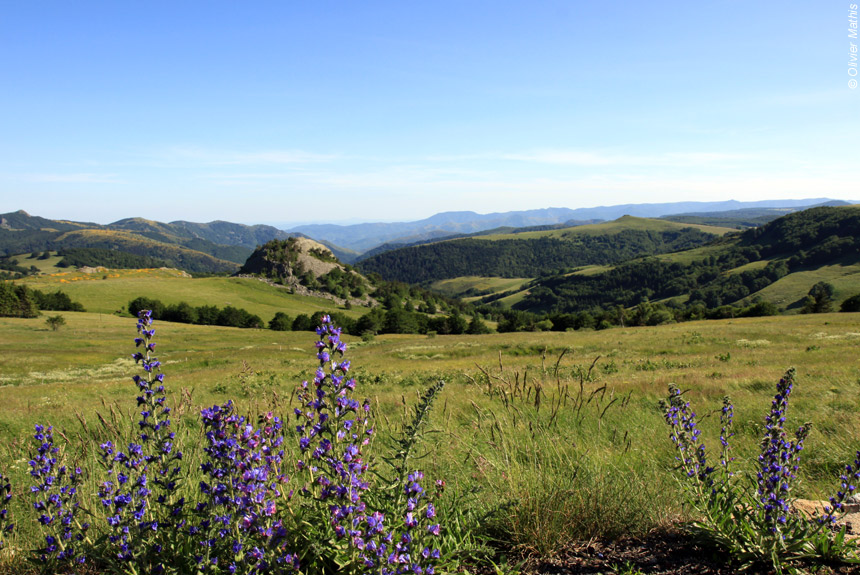 Voyage à pied France : Ardèche, Le Mont Mézenc et la source de la Loire