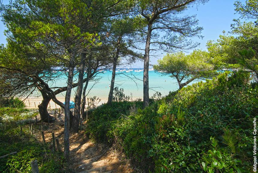 Voyage à pied : Les îles d\'or, Porquerolles et Port-Cros