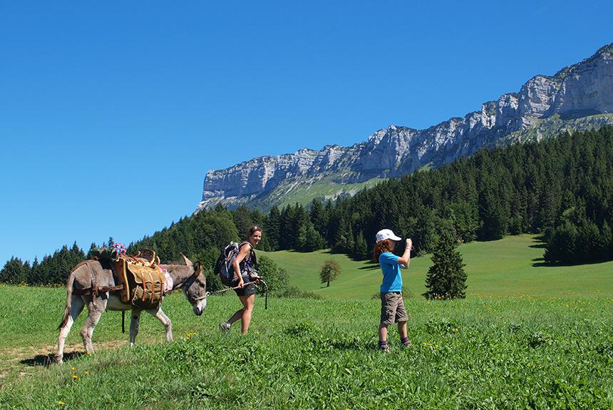 Image Avec mon âne en Chartreuse