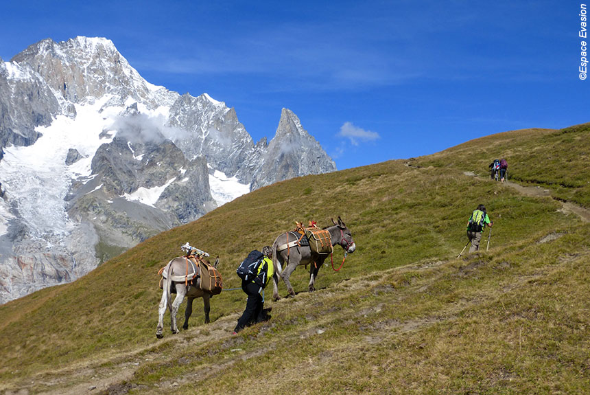 Voyage avec des animaux France : Le Tour du Mont blanc Sud, en famille avec des ânes de St Gervais à Courmayeur.