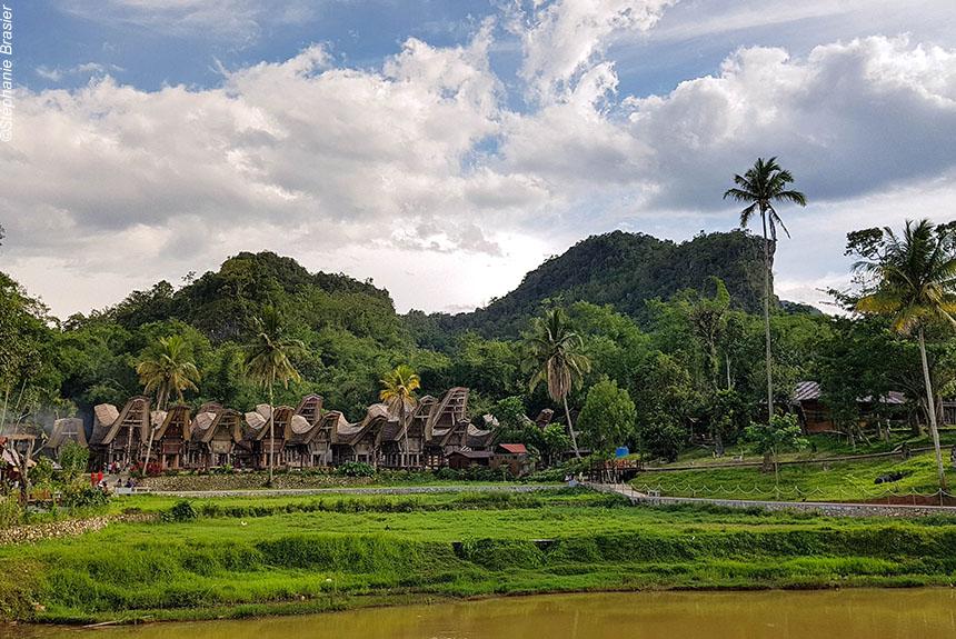 Image Sulawesi, à la rencontre des Torajas