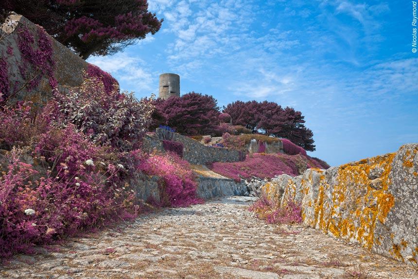 Voyage à pied France : Jersey, Guernesey et Sark