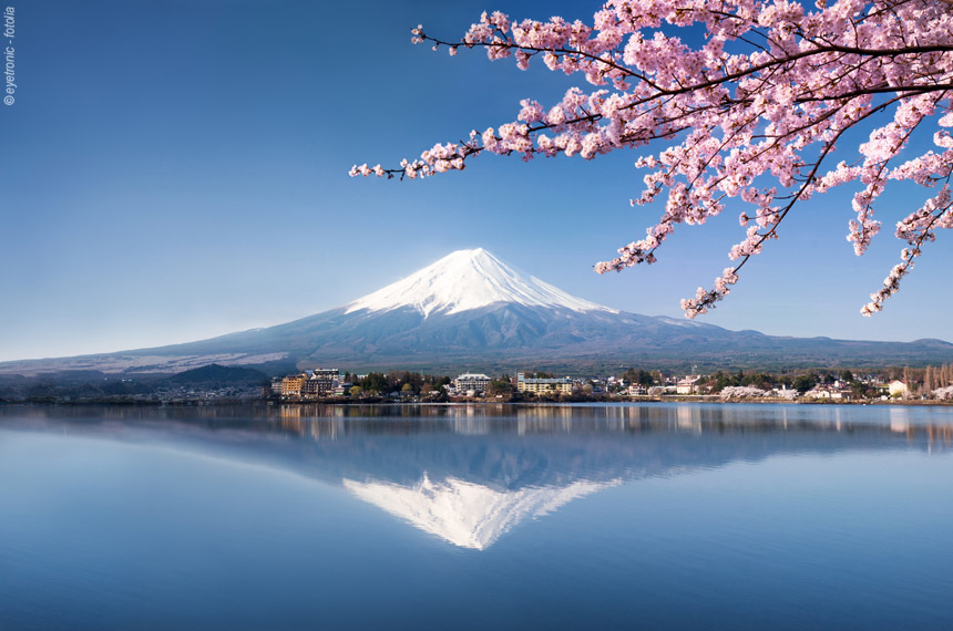 Voyage à pied : Des chemins du Kumano Kodo au Mont Fuji