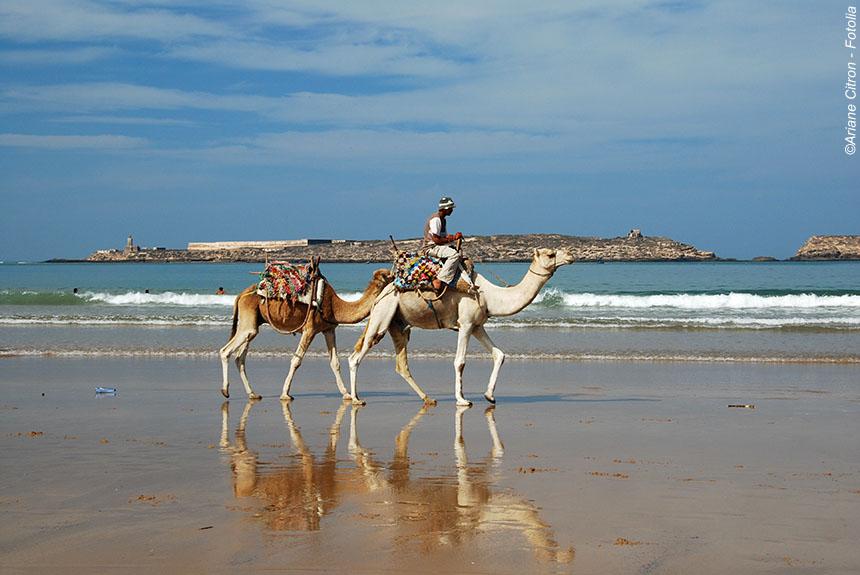 Voyage à pied Maroc : Le long de la côte atlantique