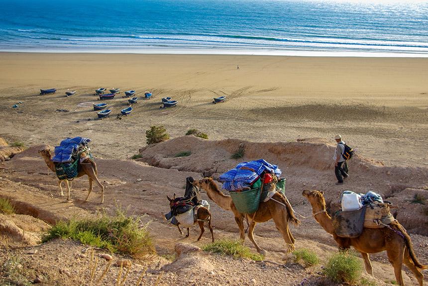 Image Essaouira, Ah ca ira..... en Famille !