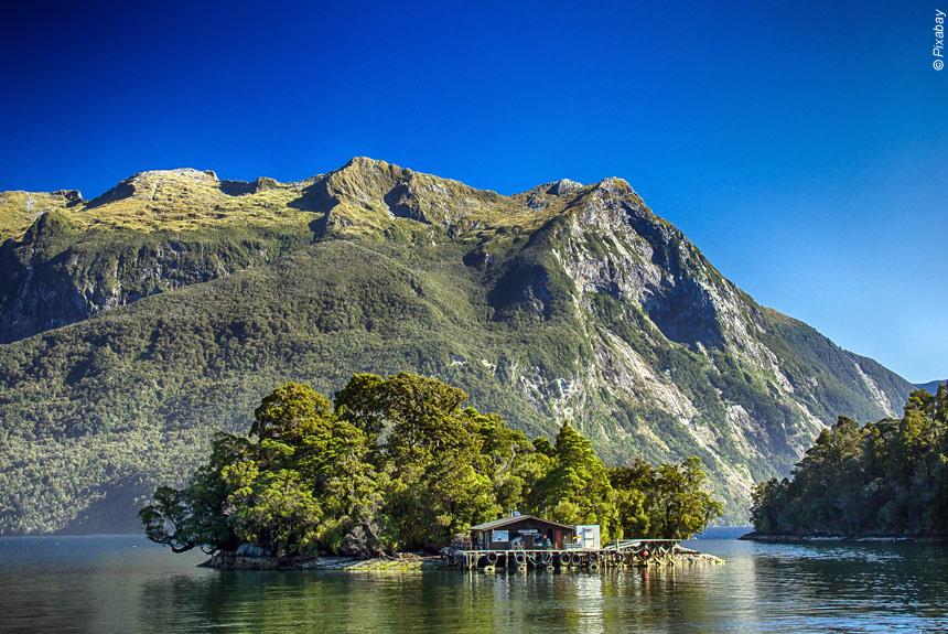 Voyage à pied : Nouvelle Zélande, Randonnées chez les Kiwis