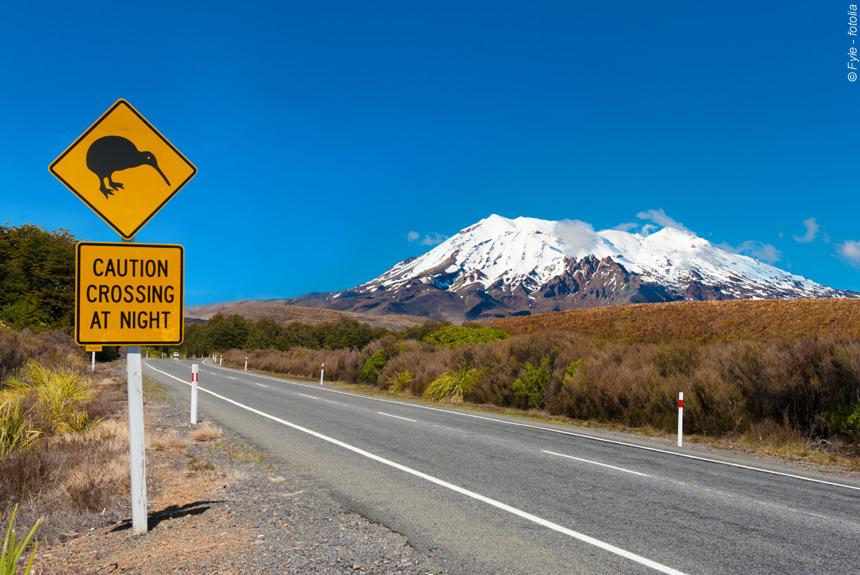 Voyage à pied : Randonnées chez les Kiwis