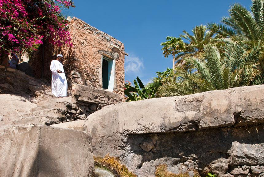 Voyage à pied : Canyons et wadis du Jebel Hajar