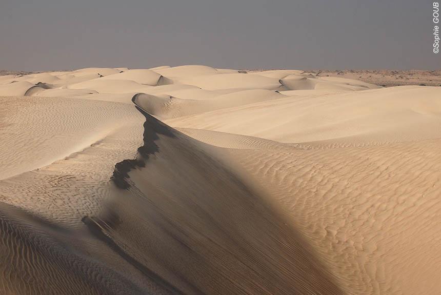 Image Montagnes, dunes et océan.