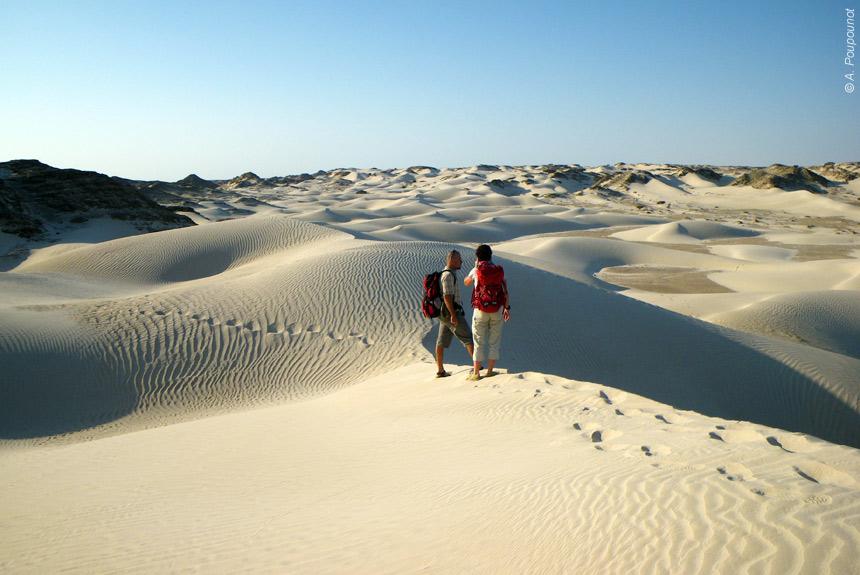 Voyage à pied : Du désert à l\'océan, des Wahibas à Sugar Dunes