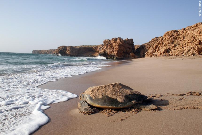 Le Sultanat d'Oman