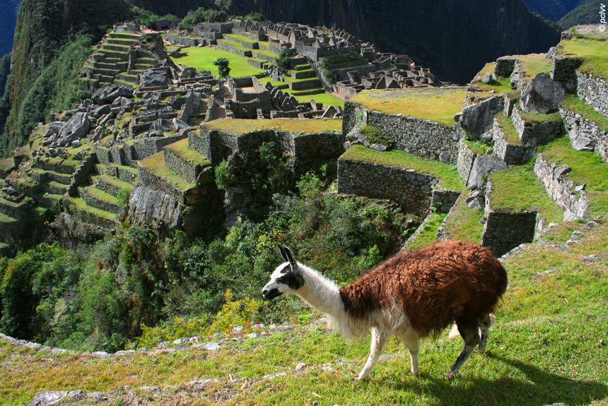 Du Machu Picchu au lac Titicaca