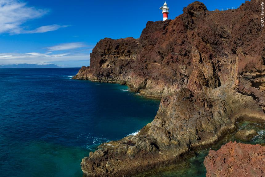 Image Tenerife, sur le chemin des Tabaïbas