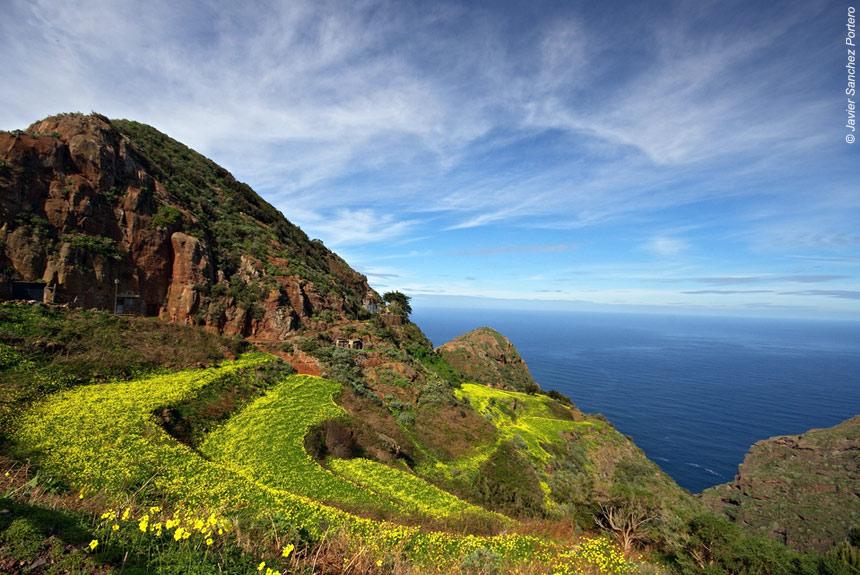 Image Trek sur Tenerife