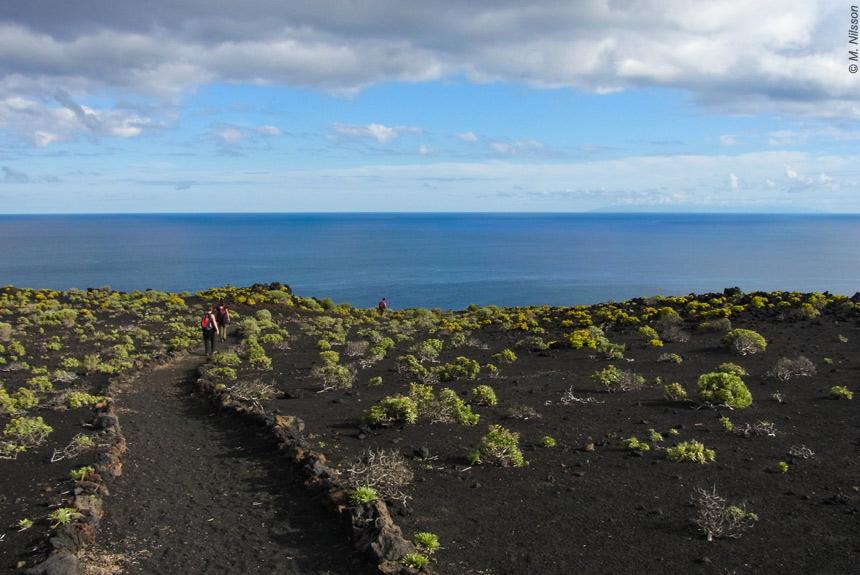 Image La Palma, la Isla Bonita