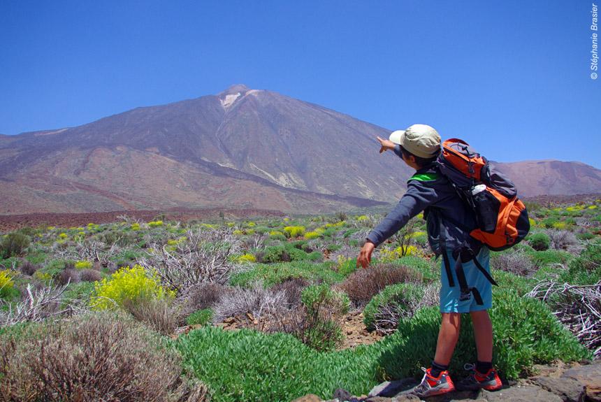 Voyage à pied Espagne : Tenerife/Gomera, volcan endormi et dauphins joueurs
