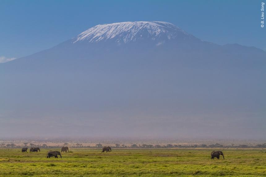 Voyage à pied Tanzanie : Ascension du Kilimandjaro.