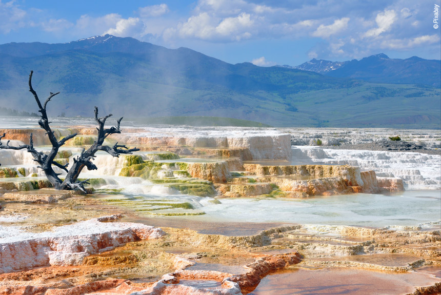 Voyage à pied : Mythique Yellowstone, entre canyon et geysers